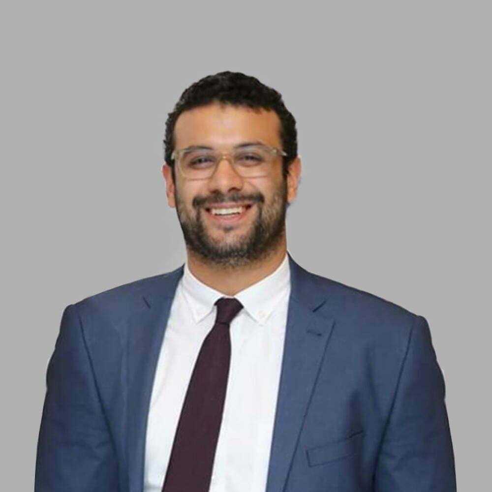 هشام الجمل