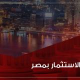 ضمانات الاستثمار في مصر