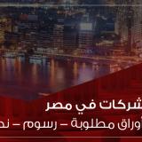 خطوات تأسيس الشركات في مصر