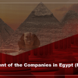 Establishment of the Companies in Egypt - Full Guide